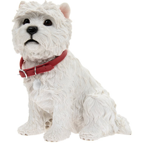 West Highland Terrier Sitting