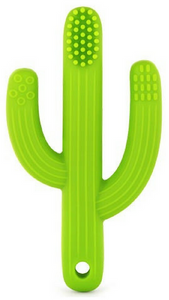 Cactus 2 in 1 Teether Toothbrush (Green)