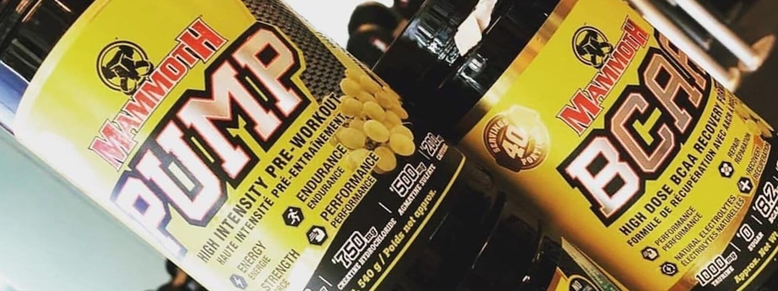 Our Top Two Mammoth Supplements Blog Post
