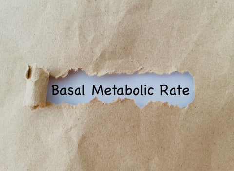 """""""Basal Metabolic Rate"""" (BMR) typed on paper"""