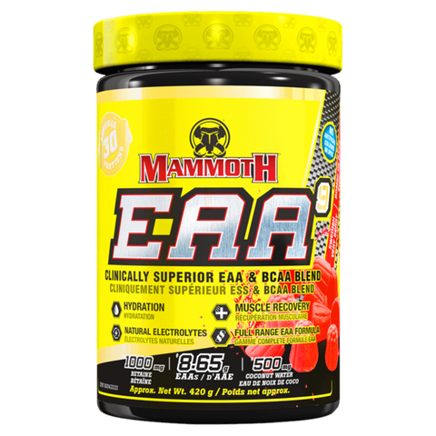 Mammoth EAA Plus BCAA Amino Acids Workout Recovery Supplement Superstore