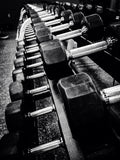 line of weights in black and white
