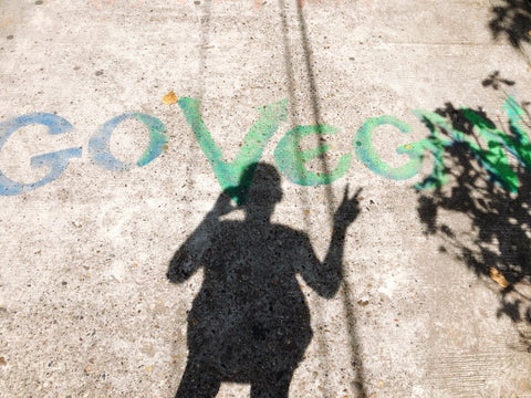 """""""Go Vegan"""" painted on sidewalk with shadow of person holding up peace sign"""