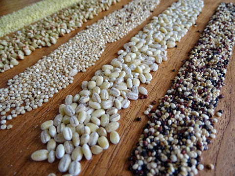 Lines of different types of grains slayed out on table