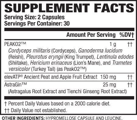 Jacked Factory Build-XT Nutrition Facts at Supplement Superstore Canada