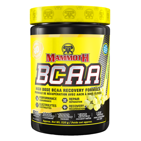 Mammoth BCAA Workout Recovery Amino Acids Supplement Superstore
