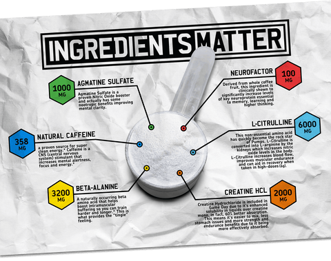 MAN Sports Game Day Pre Workout Ingredient Science at Supplement Superstore Canada