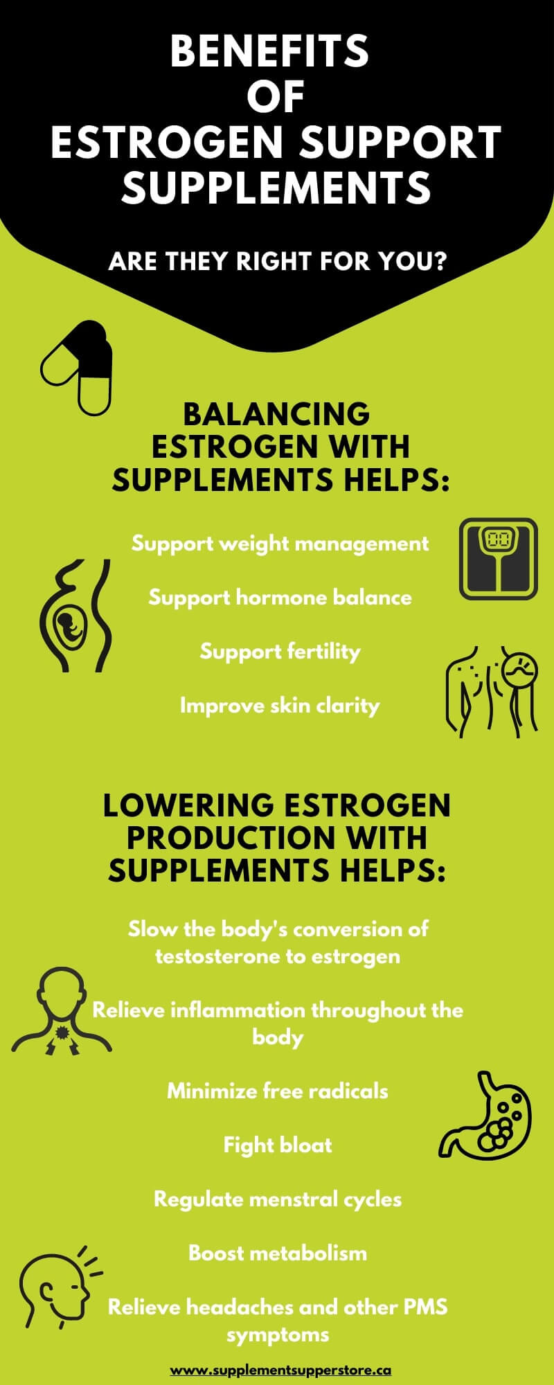 Should I Take Estrogen Support Supplements Infographic