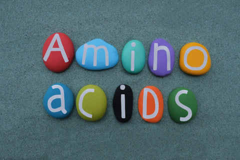 """Colorful stones with """"Amino Acids"""" written on them"""