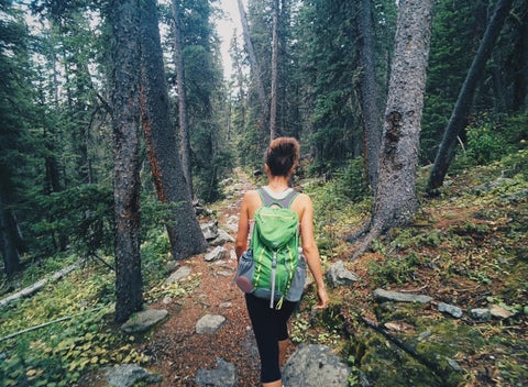 Back view of woman hiking in woods