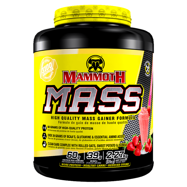 Mammoth Mass Weight Gainer 5lb / Strawberry at Supplement Superstore Canada