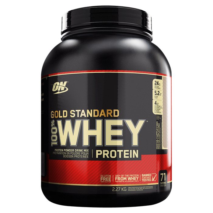 ON Gold Standard Whey Protein