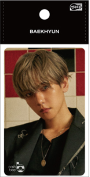 Baekhyun City Lights - Transportation Card