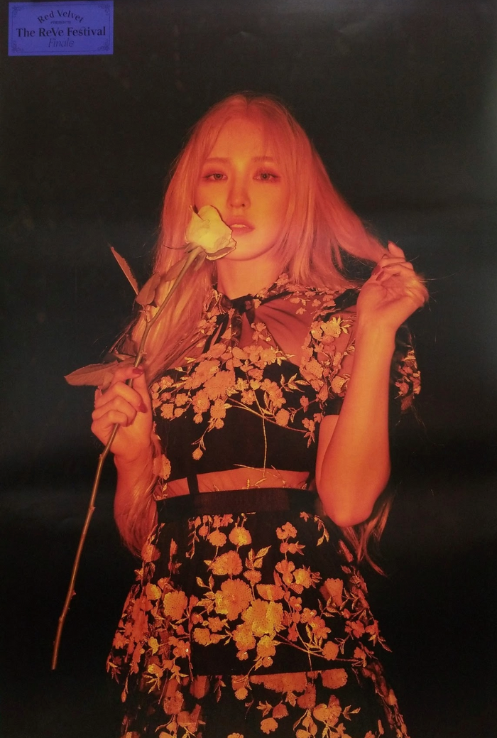 RED VELVET The Reve Festival Finale Official Poster - Photo Concept Wendy