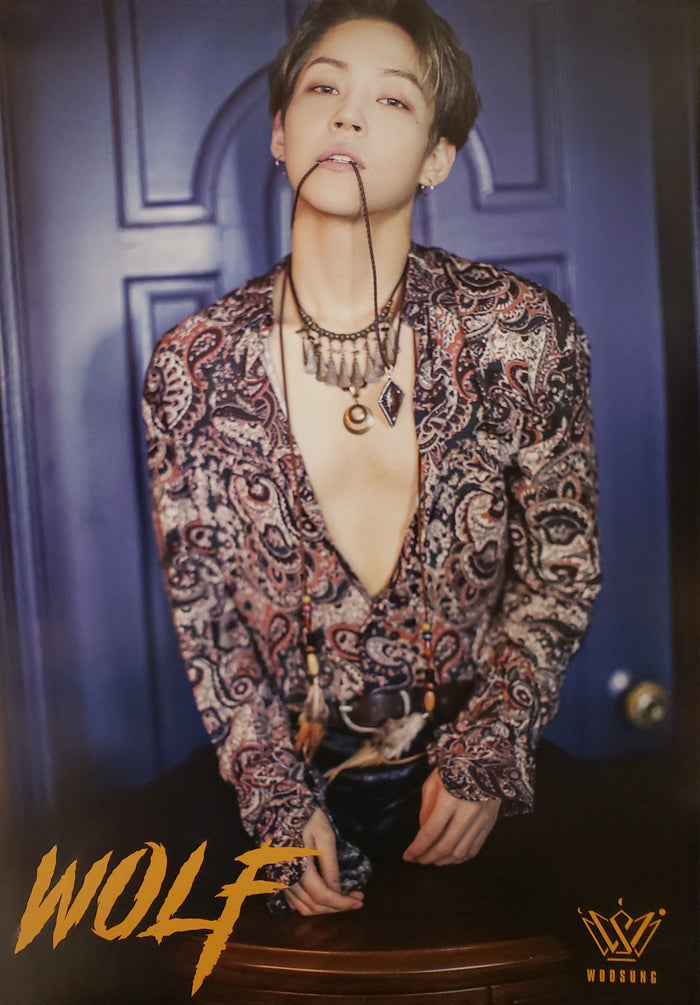 WooSung 1st Mini Album WOLF Official Poster - Photo Concept 2