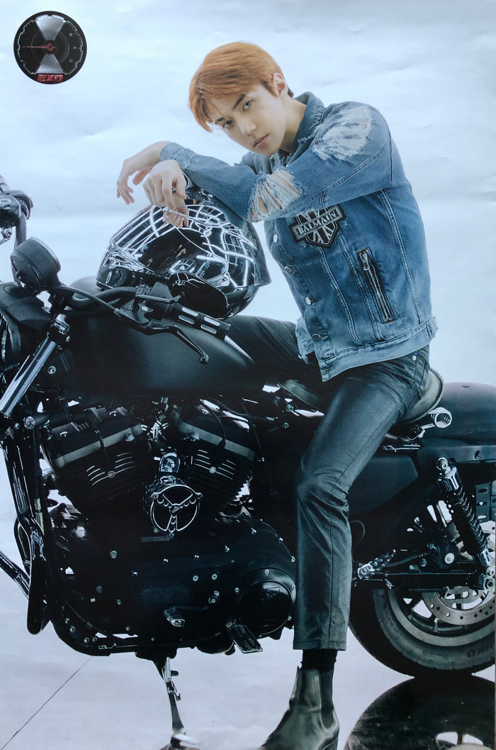 EXO 5TH ALBUM [DON'T MESS UP MY TEMPO] (VIVACE VER.) LIMITED EDITION MEMBER POSTER - SEHUN