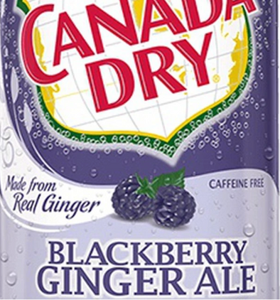 CANADA DRY BLACKBERRY GINGER ALE - EXOTIC POP
