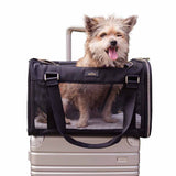 Arlo Skye pet carrier travel gift