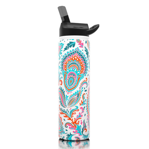 27oz Stainless Steel Water Bottle (Paisley)