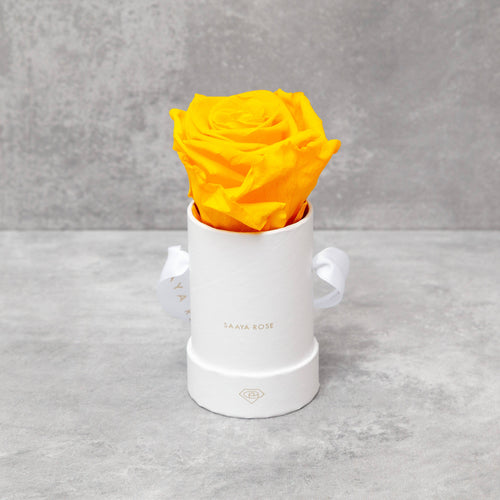 Single White Box (Yellow Rose)