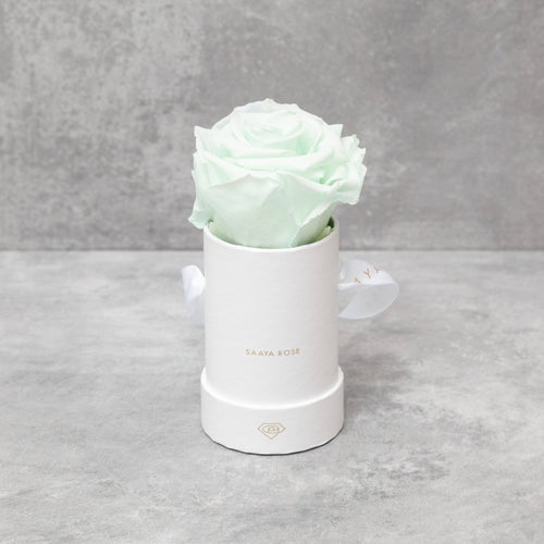 Single White Box (Mint Green Rose)