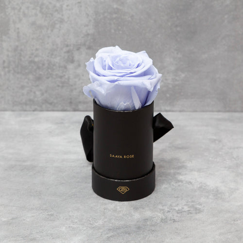 Single Black Box (Purple Haze Rose)