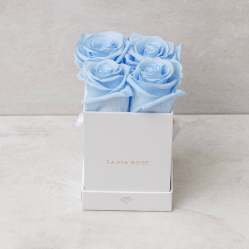 4 Sky Blue Roses (White Box)