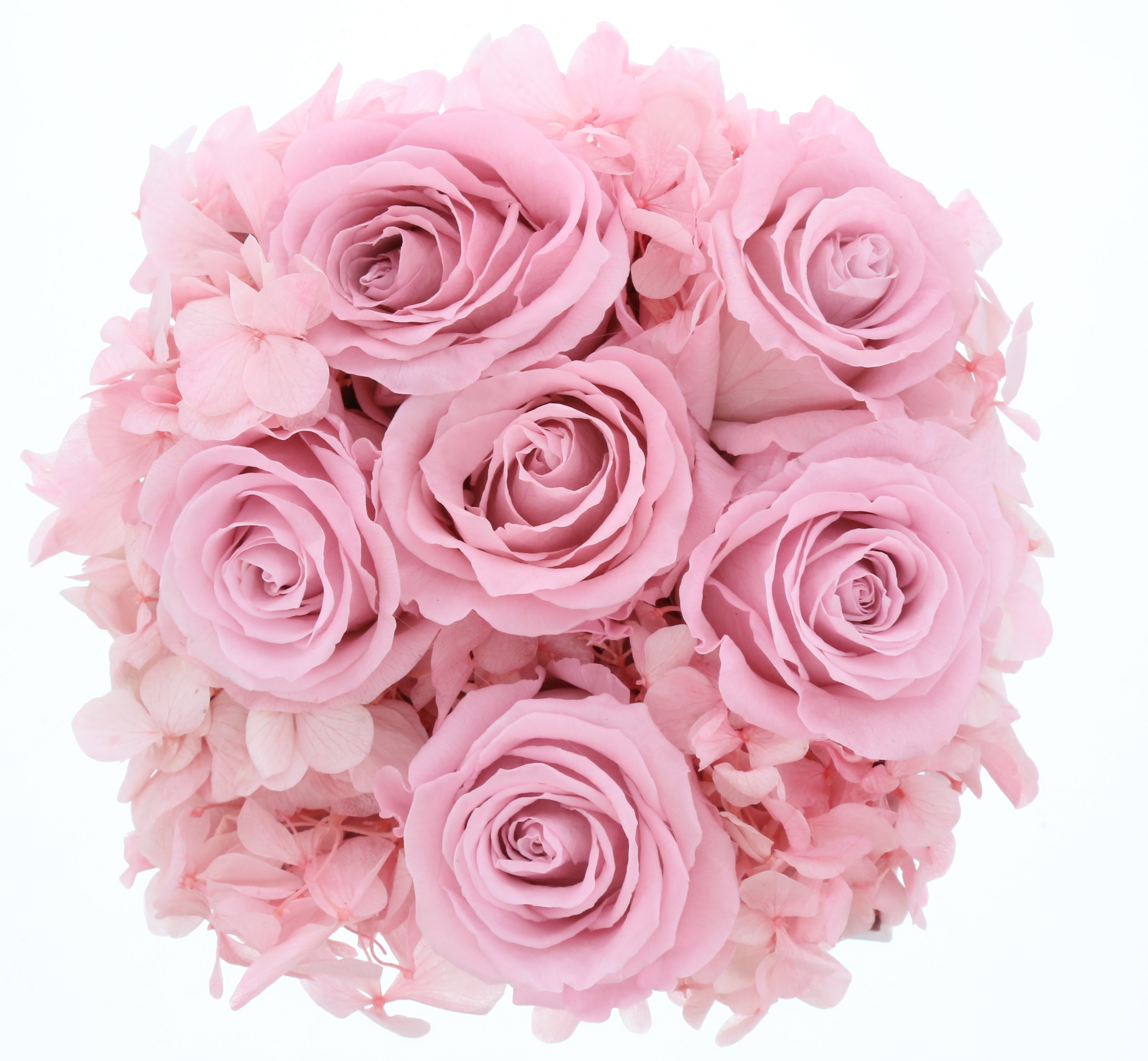 Hydrangea Rose Box (small) - Saaya Rose