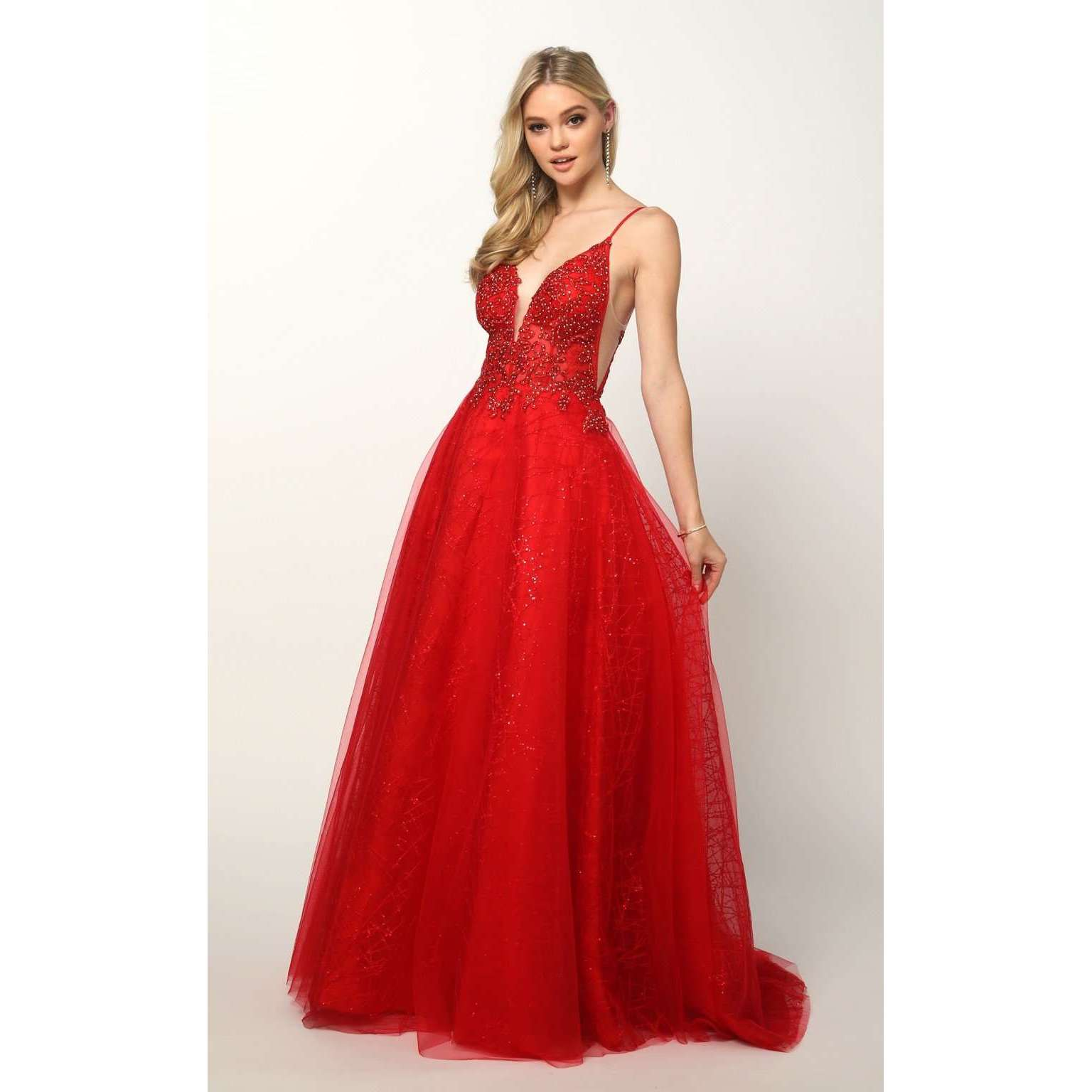 Sheer Embroidered Bodice with Sequin Train Tulle Ballgown Skirt 689 - Julietdresses