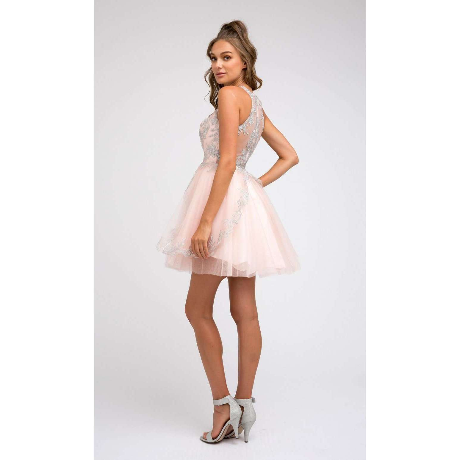 Embroidered Bodice Glitter Mesh Hoco Short Dress 847 - Julietdresses