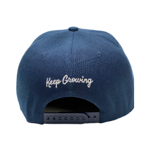 SnapBack adjustable cap - Blue