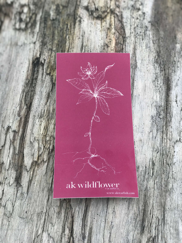 Magenta AK Wildflower $6.00