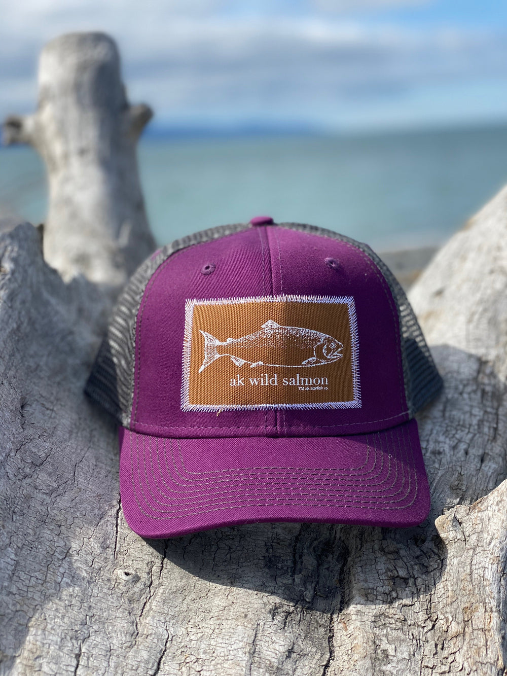 Beach Mussel Shell and Slate AK Wild Salmon Patch Hat $35.00