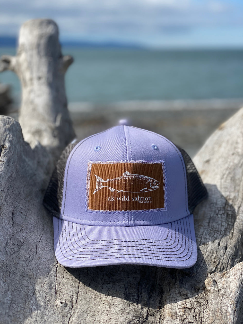 Alpenglow and Slate AK Wild Salmon Patch Hat $35.00