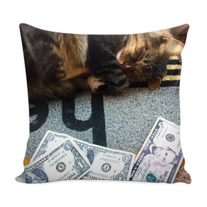 """Dreaming of Money"" Pillow Cover"