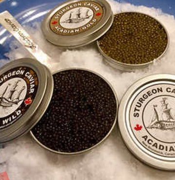 VALENTINE'S DAY CAVIAR KIT