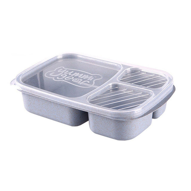 Lunch Bento Boxes Dinnerware Set