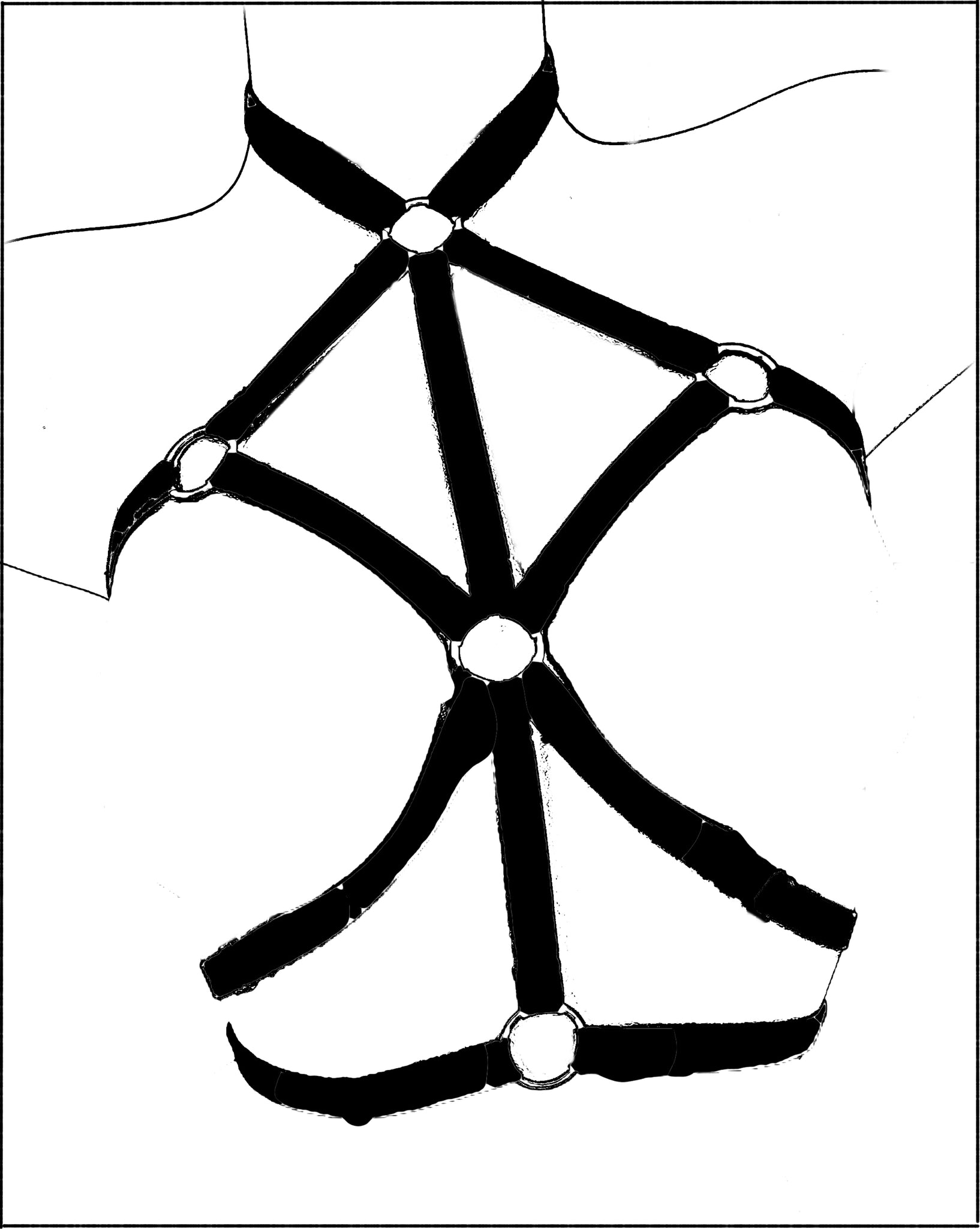 Mosaic harness