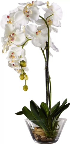 silk white phalaenopsis orchid in glass vase