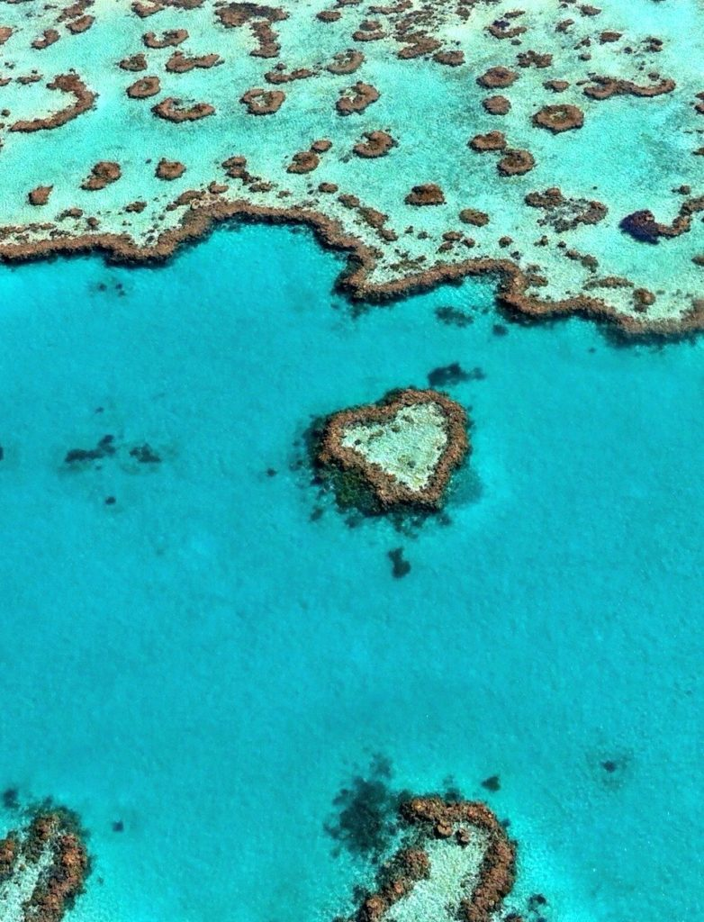 Heart Island Reef Australia aerial view. Keep spreading the love with Smithers Swimwear