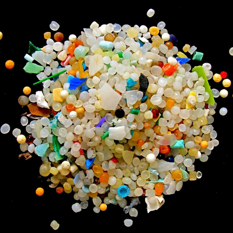 The impact of micro plastics