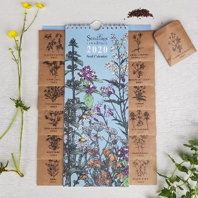 2020 Seed Calendar | Seedlings