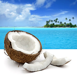 Aruba Coconut Fragrance Oil
