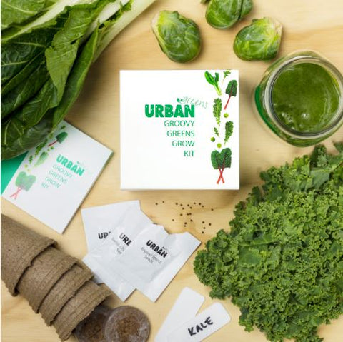 Urban Greens Grow Kit Kale