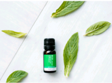 ECO AROMA Peppermint Essential Oil Blend 10ml