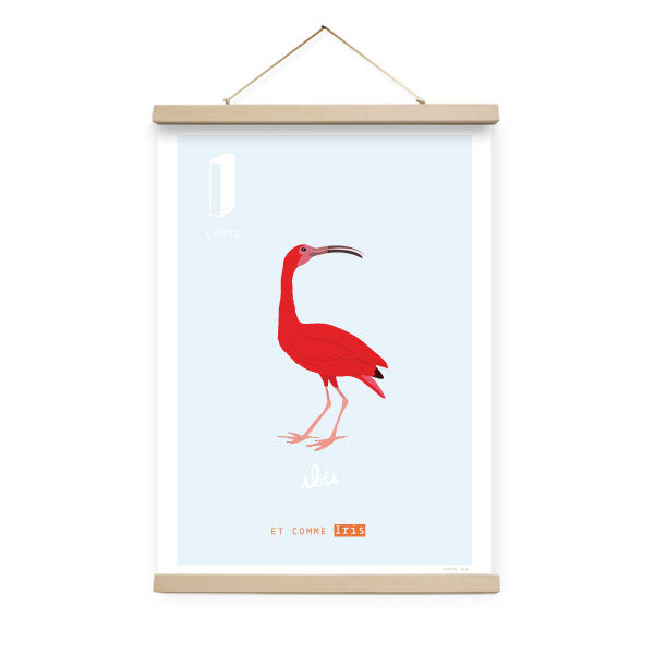 Affiche I comme Ibis