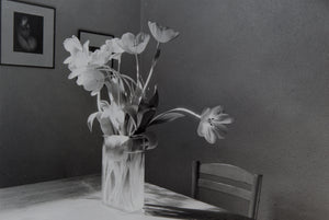 Tulipa Kitchen Series - 1