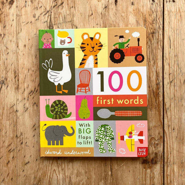 Nosy Crow 100 First Words Book