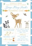 Woodland Animals Christening Invitations Boy Girl Unisex Joint Twins Baptism Naming Day Ceremony Celebration Party ~ QUANTITY DISCOUNT AVAILABLE