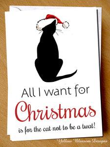 All I Want For Christmas Is The Cat Not To Be A Twat ~ Xmas Greetings Card